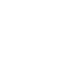 check engine light button